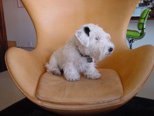 My Chair 2